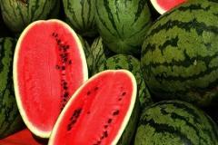 صادرات 117 هزار تن هندوانه در دو ماه