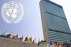 آزار جنسی کارمندان سازمان ملل