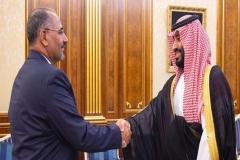 شروط متحدان امارات برای عربستان جهت انصراف از خودمختاری در جنوب یمن