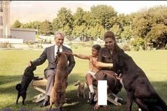محمد رضا، پادشاه سگ باز